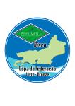 Copa da Federação Livre Bronze 2015